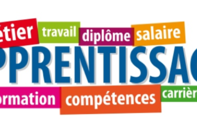 Dispositif de préparation à l'apprentissage
